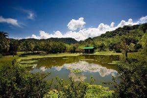 Guided Trails Costa Rica (1)